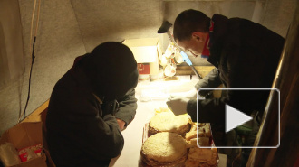 На Масленицу петербуржцы кормили бомжей блинами