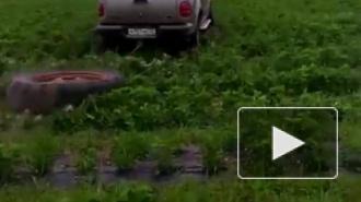 Хабаровский чиновник разгромил на своем внедорожнике клубничную плантацию начинающего фермера