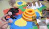 Жестоко замученного детьми в Липецке котенка забрала домой активистка