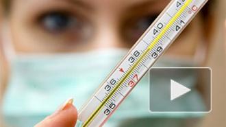 Петербург в шаге от эпидемии гриппа