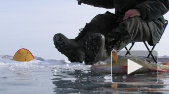 МЧС снова спасает любителей подледной ловли