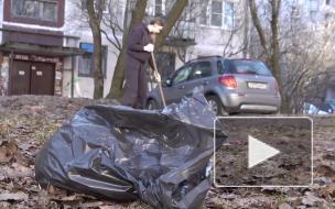 Депутат ЗакСа Ленобласти Михаил Макаров вышел на уборку двора в Выборге