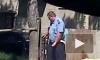 В Чебоксарах пьяный полицейский сбил на переходе двоих, один погиб