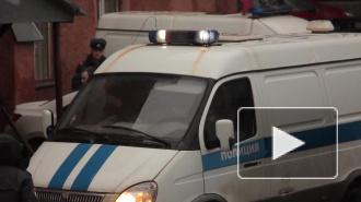 В Петербурге из мехового салона похитили дорогие шубы на 10,5 млн рублей