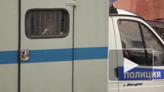 В Петербурге задержан приезжий из Красноярска, который в Пулково украл пакет мигранта из Таджикистана