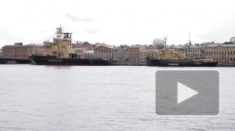 В Петербурге подивились громадным ледоколам