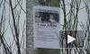 Волонтёры о поисках Алёны Щипиной: «Будем копать, пока не найдём»
