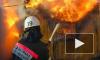 В Петербурге при загадочных обстоятельствах заживо сгорела депутат-единоросс