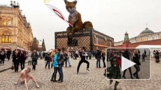 Фотожабы и пародии на изгнание чемодана с Красной площади