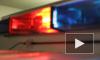 В Подмосковье на масленичных гуляньях погибли мужчина с дочерью