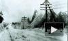 Петербург на выходных может пострадать от ледяного дождя
