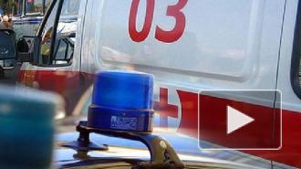 Посетителя кафе в центре Петербурга расстреляли из травматики