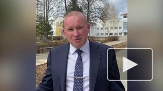 Стая собак загнала российских школьников на дерево