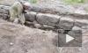 """В парке """"Монрепо"""" археологи нашли баню времен Людвига Николаи"""