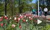 Перед майскими праздниками россияне будут работать всего 2 дня