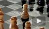 На телах украинской пары шахматистов нашли следы уколов
