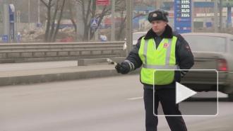 На Пулковском шоссе маршрутка снесла дерево