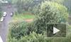 Ленобласть накроют сильные ливни