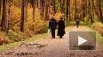 Депутаты «отправили» застройку парков на третье чтение