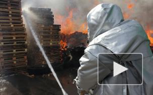 Калейдоскоп городских будней: происшествия с 4 по 10 мая