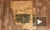 """Жители дома Бака показали клад, найденный в """"тайной комнате"""""""