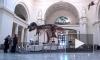 Обнаружен последний из выживших динозавров