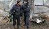 СК: некоторые районы Петербурга скоро превратятся в гетто