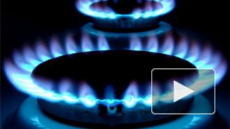 В Петербурге преодолены последствия газового коллапса