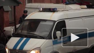 """В московском парке """"Братцево"""" спиленное дерево упало на коляску, полугодовалая девочка в больнице"""