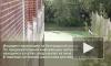 Девятилетний школьник выпал из окна в Купчино, когда был в гостях
