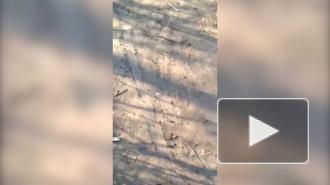 ВСУ обстреляли Горловку из крупнокалиберной артиллерии
