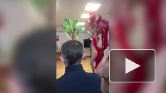 Чиновницы из Ленобласти поздравили коллег-мужчин танцем в трусах и перьях