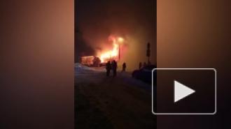В Красном селе дотла сгорел дом многодетной семьи