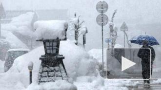 Мощнейший снегопад в Японии унес жизни 3 человек, более 400 пострадали