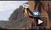 """Disney заключил с """"ВКонтакте"""" соглашение о партнерстве"""