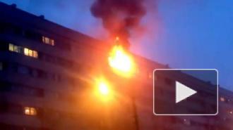 В Петербурге в жилой девятиэтажке прогремел взрыв