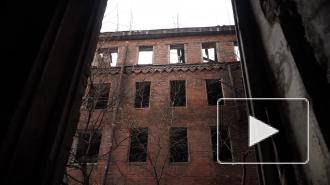 """""""Заброшки"""" на Неве не первый год привлекают маргиналов. Местные жители бьют тревогу"""
