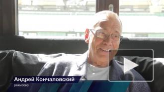 Последние новости о Маше Кончаловской: родители прокомментировали информацию о выходе из комы и первых словах