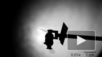 MIT: В США создали дронов размером с насекомое