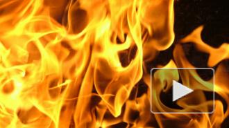 Крупный пожар вспыхнул на 1-й Красноармейской, ограничено движение транспорта