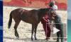 Госдеп снял лошадь Кадырова со скачек в США из-за нарушений в Чечне прав человека