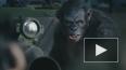 """""""Планета обезьян: Революция"""" лидирует в мировом прокате"""