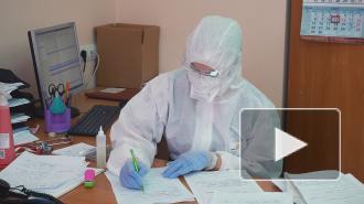 В Петербурге 23 ноября вступили в силу новые коронавирусные ограничения