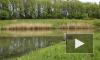 В России вступил в силу закон о любительском рыболовстве