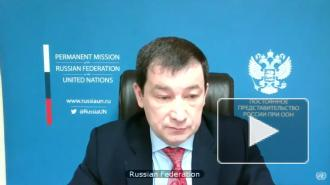 Дипломаты РФ и КНР попрощались с покидающим СБ ООН постпредом ФРГ словами Жванецкого