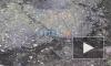 Петербуржцы: в прудах Таврического сада умирают утки