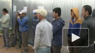 """На """"Юноне"""" провели миграционный рейд, 11 приезжих доставили в отдел полиции"""