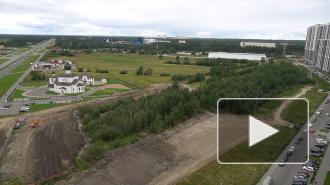Жители Приморского района обеспокоены вырубкой деревьев для строительства автостоянки