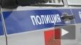 Московский педофил, скрываясь от полицейской погони, ...