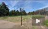 В Пискаревском парке появился памятник самоизоляции